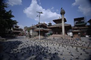 Lots of pigeons, no tourists: Kathmandu's Basantapur Durbar Square, a UNESCO world heritage site in mid-May.