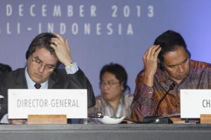 There were difficult moments: WTO Director-General Roberto Azevêdo and Indonesia's Trade Minister Gita Wirjawan.