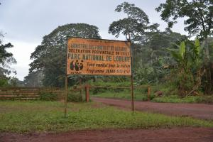 In Lobéké National Park in Cameroon there is conflict between park rangers and the local community.