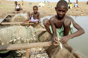 Young slave labourers in the fish industry in Ghana.