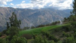 Water issues get more international attention than soil issues – irrigated Peruvian smallholding.