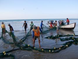 Frequent heatwaves, ocean acidification and pollution put the livelihoods of fishermen at stake. Fishermen in south-west Ecuador.