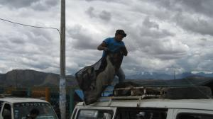 Typically, people migrate for a short time and over short distances within nation states: delivery of poultry from a rural market in the Peruvian Andes.