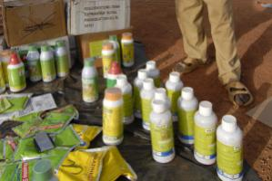 Burkina Faso dealer sells pesticides in village market. Farmers often use wrong quantities, damaging the soils.
