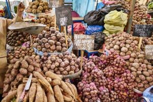 The potato is an ancient crop from South America. Market stand in Arequipa, Peru.