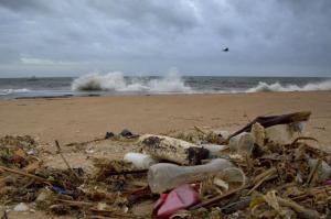 The ocean is being threatened not only by plastic waste, but also by the less visible nitrogen and phosphorus. Beach in Sri Lanka.