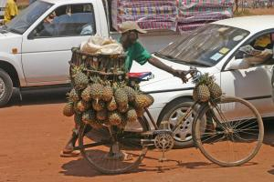 Better market access is one way to improve smallholders' income and nutrition intake. Pineapple seller in Uganda.