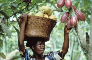 Ghana and Ivory Coast were ready to strike a separate trade deal for the sake of cocoa exports.