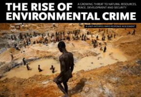 UNEP and Interpol report: The rise of environmental crime.
