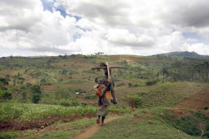 In Malawi, most people depend on subsistence agriculture.