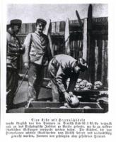 Historical postcard of 1907: German soldiers with skulls of killed Herero