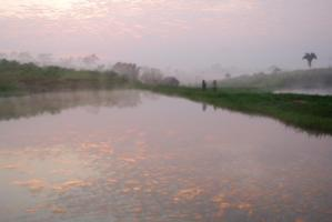 Fish breeding ponds in Brazil: Aquaculture has been spreading here since the 1990s.