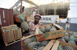 """Poor developing countries also felt the impacts of the crisis – especially when their export earnings slumped in 2009"": Ghanaian exports pineapples."