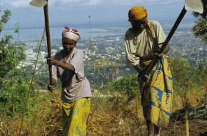 Widespread distrust makes collective action difficult: farmers in Burundi.