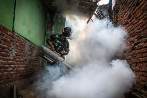 Pesticides should only be used sparingly, but application can make sense where the dengue risk is evident: government-sponsored fogging in Aceh Province in February.