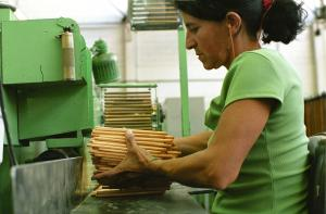 Producing pencils from FSC wood on behalf of the private-sector brand Faber-Castel in Brazil.