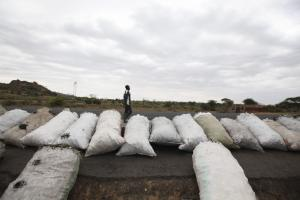 Charcoal bags ready for sale in rural Kenya.