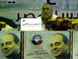 The Salafi Nour party has turned against the Muslim Brothers in support of Egypt's President Abdel-Fattah el-Sisi.