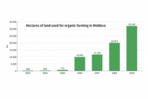 Hectares of land used for organic farming in Moldova