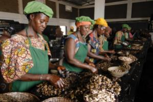 Africa must process more goods: workers sorting cashew nuts in Burkina Faso.