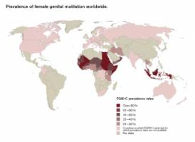 Prevalence of female genital mutilation worldwide.