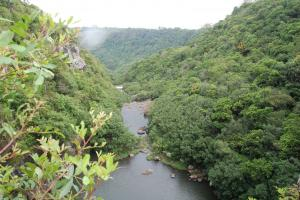 View of the Tamarin River in Mauritius.