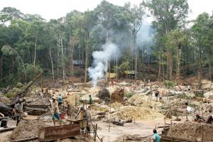 Gold mines contribute to the destruction of the Brazilian Amazon.