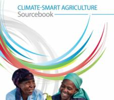 FAO´s Climate-smart agriculture sourcebook