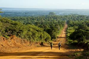 A rural road in Inhambane Province.