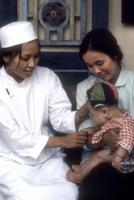 Only half as many mothers die in childbirth in Vietnam as in the mid-1990s: a doctor at work in a village hospital outside Hanoi
