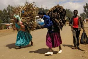 Two Ethiopian women carrying firewood