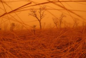 Benin is one of the countries feeling the effects of climate change, and it has successfully accredited a national implementing agency to the Adaptation Fund. Sand storm in the Pendjari National Park