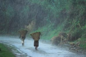Children braving the Monsoon rain in Sikkim's Himalayan mountains
