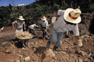 Infrastructure matters: building a feeder-road in Guatemala