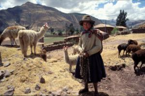 """Small-farm development correlates clearly with rural poverty reduction and agricultural growth."" Herdswoman in the Peruvian Andes."
