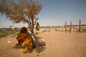 Refugees at Lake Chad, the water level of which has dropped dramatically