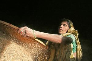 Worker in a Bangladeshi rice mill