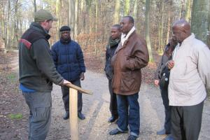 "A delegation from Cape Coast visiting the ""biodiversity path"" in Bonn's municipal forest"