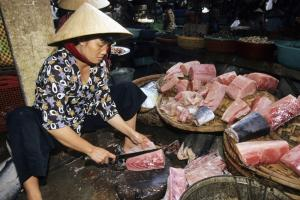 Vietnam needs more than coastal fishing